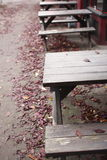 Picnic tables Stock Images