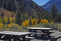 Free Picnic Tables Stock Image - 3379771