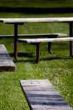 Picnic Tables. In grassy area royalty free stock photography