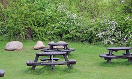 Free Picnic Tables Royalty Free Stock Photo - 9146185