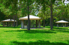 Picnic tables area in beautiful green grassy park Royalty Free Stock Photo