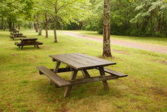 Picnic Tables Royalty Free Stock Image