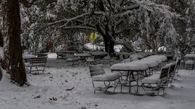 Picnic tables covered in snow stock photography