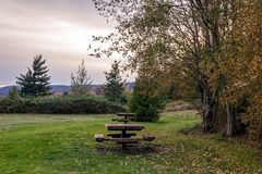 Picnic tables in fall. On an overcast day Stock Photography