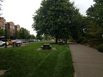 Picnic tables and green grass in park in Corvallis, Oregon royalty free stock images