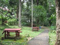 Picnic tables at Makiling botanical gardens, Philippines royalty free stock images