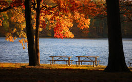 Picnic tables in the park Stock Photo