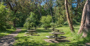 Picnic Tables In the Park 2. A view of picnic table at Lincoln Park in West Seattle, Washington Royalty Free Stock Photography