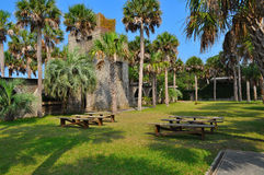 Picnic tables under palm trees Stock Images