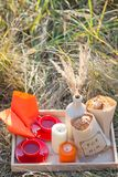Picnic - tea and cookies Royalty Free Stock Image