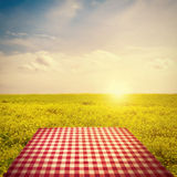 Picnic Template. With tablecloth in buttercup field against sun in sky Stock Photography