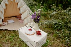 Picnic in a tent Royalty Free Stock Photos
