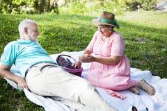 Picnic Time. Senior couple enjoys a romantic picnic in the park Stock Photos