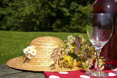 Picnic time Royalty Free Stock Image