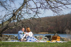 Picnic Toast Royalty Free Stock Photo
