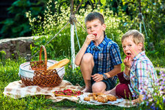Picnic for two brothers Stock Photos