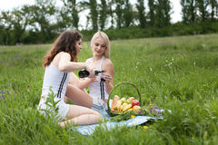 Picnic two girls Royalty Free Stock Images