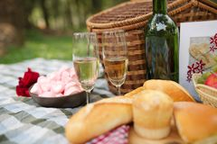 Picnic for two Royalty Free Stock Photos
