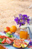 Picnic. View of picnic table with fruits, juice and vegetable at the camping area Royalty Free Stock Image