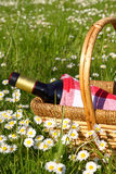 Picnic with vine stock images