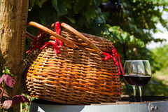 Picnic in Vineyard Royalty Free Stock Images