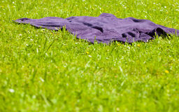 Picnic. Violet blanket on the green grass of meadow Royalty Free Stock Photo