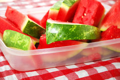 Picnic Watermelon Stock Image