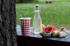 Picnic with watermelon. Summer picnic on the bench in the park Royalty Free Stock Images