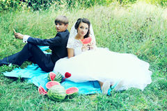 Picnic with watermelons Stock Image