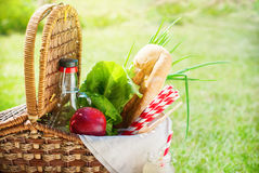 Picnic Wattled Basket Setting Food Drink Green Royalty Free Stock Photography