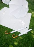 Picnic with white Accessoires Stock Photography