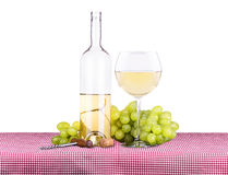 Picnic with white wine and grapes Stock Photo