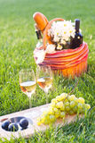 Picnic with white wine on the grass. Picnic basket with white wine on the grass Stock Images
