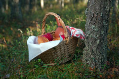 Picnic wicker basket Royalty Free Stock Photos