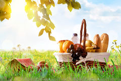 Picnic wicker basket with food on grass in the field. Picnic wicker basket with food on the grass in the field with blue sky background and sun. Picnic concept stock photography