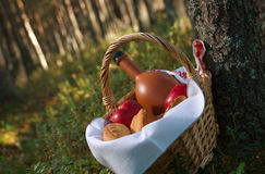 Picnic wicker basket with patty Royalty Free Stock Photography