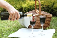 Picnic with wine Stock Photos