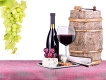 Picnic with wine and food Royalty Free Stock Images