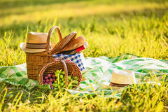 Picnic with wine Royalty Free Stock Photography
