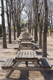 Picnic. Wooden tables in a public park stock photography