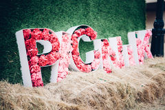 Picnic word from pink peony flowers Royalty Free Stock Images