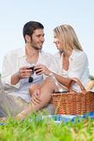 Picnic young happy couple celebrating with wine. Picnic - Romentic happy couple celebrating with wine in sunny nature royalty free stock images