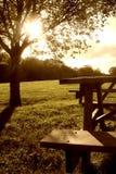 Picnicking Stock Afbeeldingen