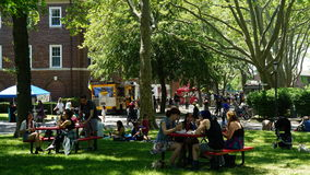 Picnicking at at Governors Island in New York Royalty Free Stock Photo