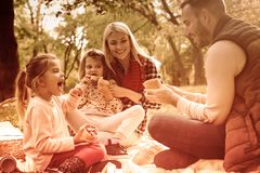 Picnics were made for autumn. Family having picnic on autumn day. Close up royalty free stock images