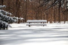 The picnictable under deep layer of snow in the park Stock Image
