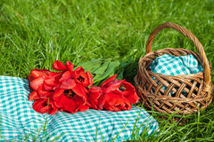 Picnik. Lying on the green grass basket, and near a bouquet of red tulips Royalty Free Stock Photos