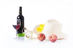 Picninc del verano con el vino Fotografía de archivo
