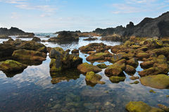 pico острова береговой линии azore вулканическое черного утесистое Стоковые Изображения