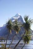 Pico 3 da mitra (NZ) Fotografia de Stock